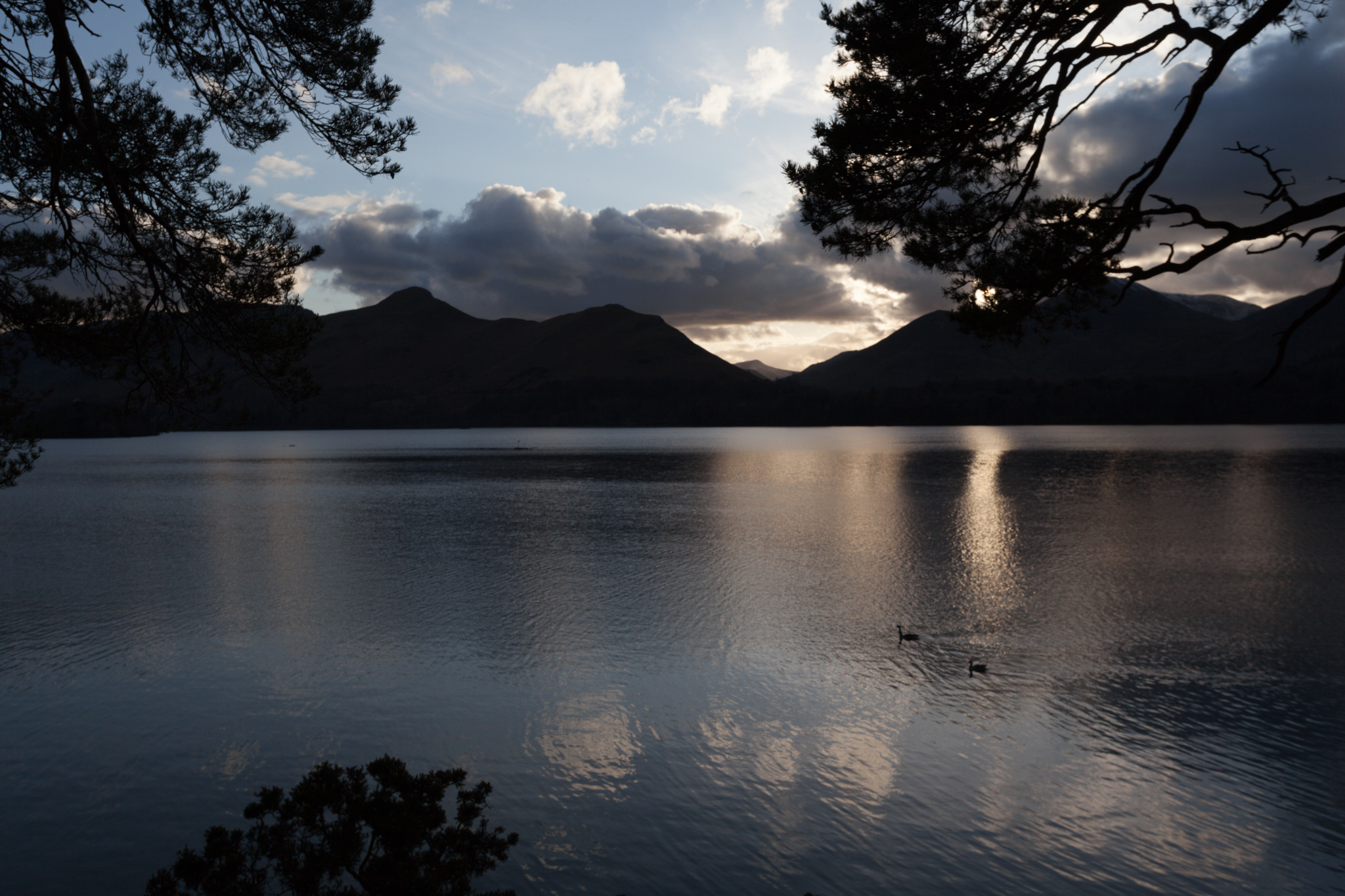 As the sun sets behind Catbells and Causey Pike in the Lake District, two ducks paddle their way across Derwentwater to find their roosting place for the night.