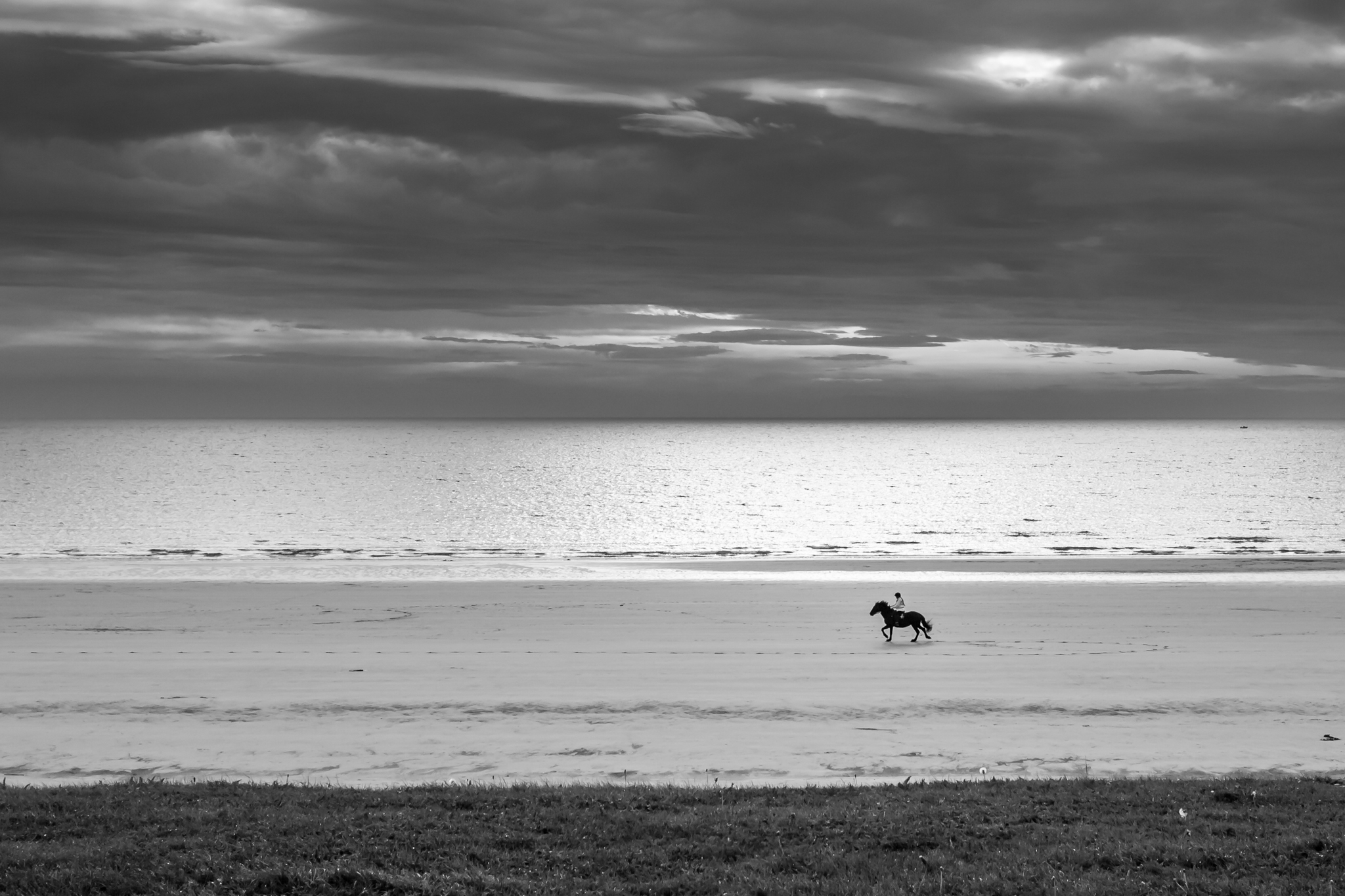 A woman takes her horse for an early morning ride along the Seaburn beach at Sunderland, as the rising sun lights the North sea.